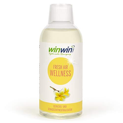 winwin clean Systemische Reinigung - Fresh AIR...