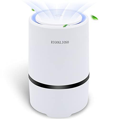 RIGOGLIOSO Luftreiniger mit HEPA Filter, Luftfilter Air Purifier für...