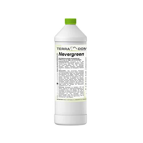 Terra Domi Nevergreen, 1 Liter Konzentrat 1:60, Moosentferner für bis...