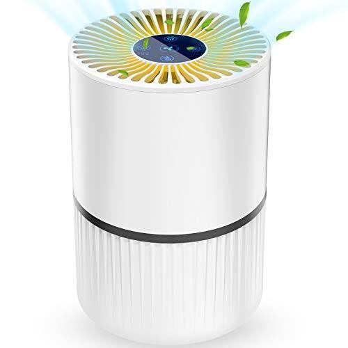 Luftreiniger Air Purifier Ionisator mit HEPA-Kombifilter...